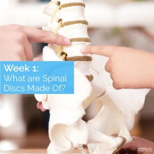 What are Spinal Discs Made of?